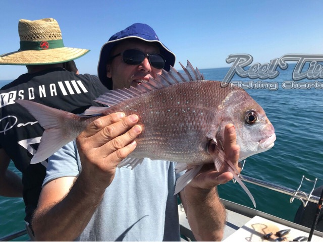 Snapper Fishing Charters with Matt Cini