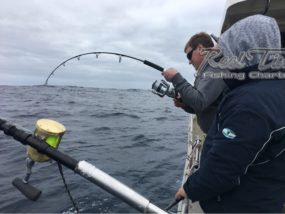 Crucis Rods for catching Tuna in Victoria