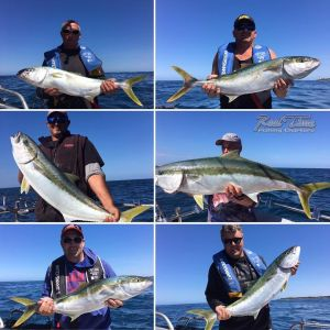 Port Phillip Bay Fishing Charters King Fish