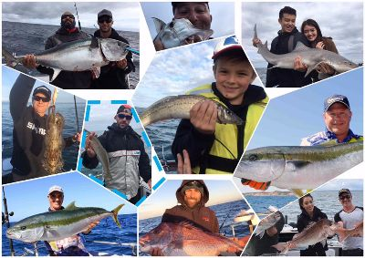 Melbourne Fishing Charters Pictures