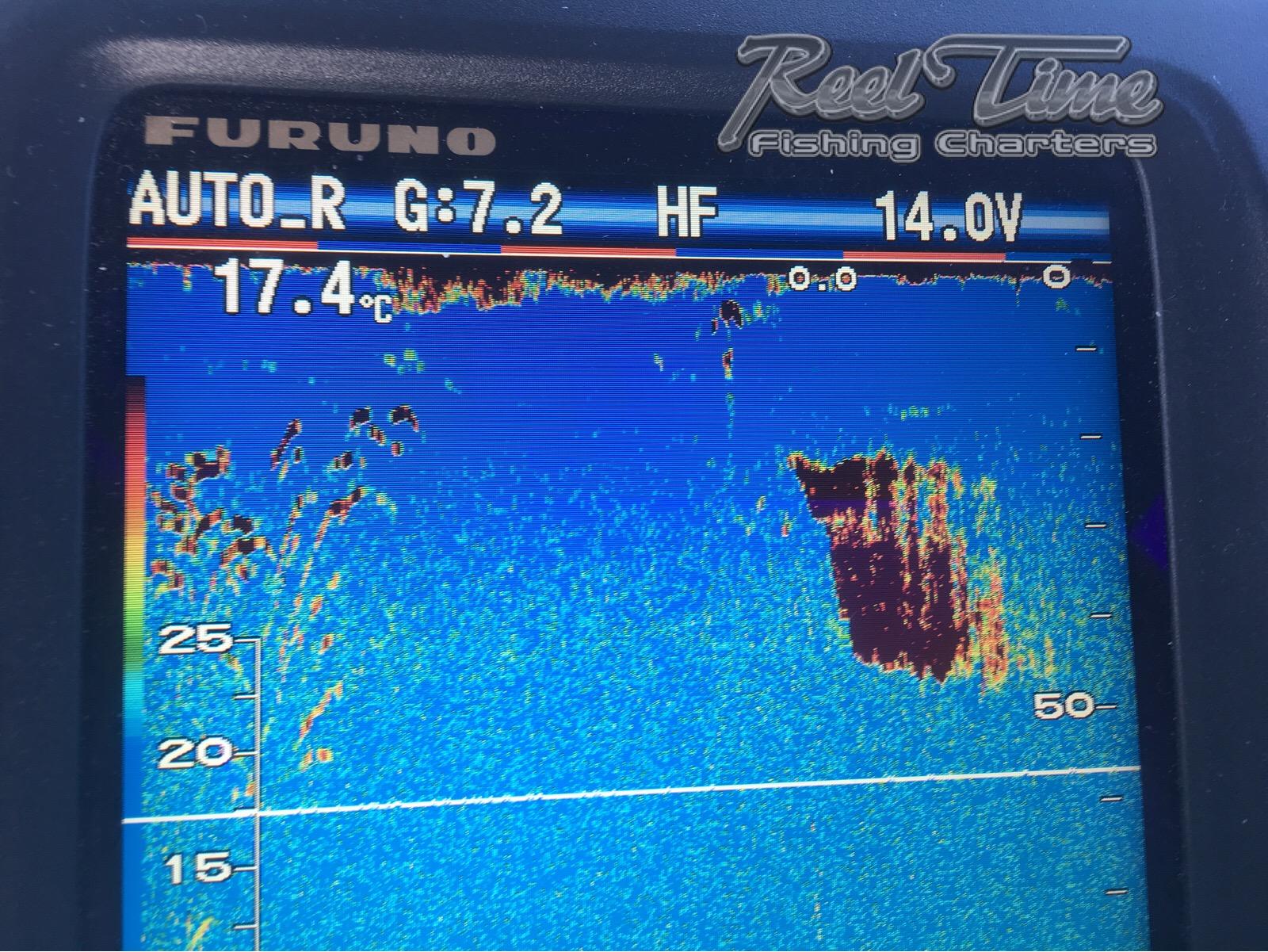 Portland Fishing Charters Tuna on Sounder