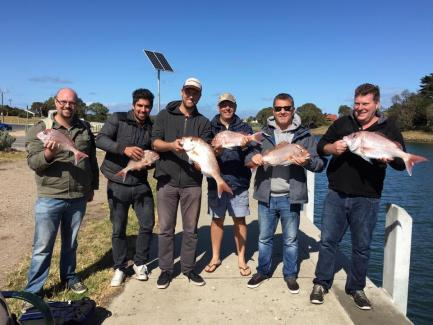 Port Phillip Bay SReel Time Fishing Charters Port Phillip Bay Snapper Vic Matt Cininapper