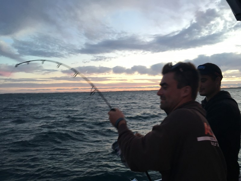 Reel Time Fishing Charters Squid,Snapper,King George Whiting,Gummy Shark,Yellow Tail Kingfish,Wrass