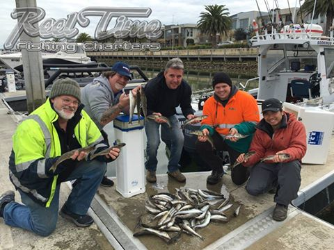 Martha Cove Fishing Charters Port Phillip Bay Whiting & Squid