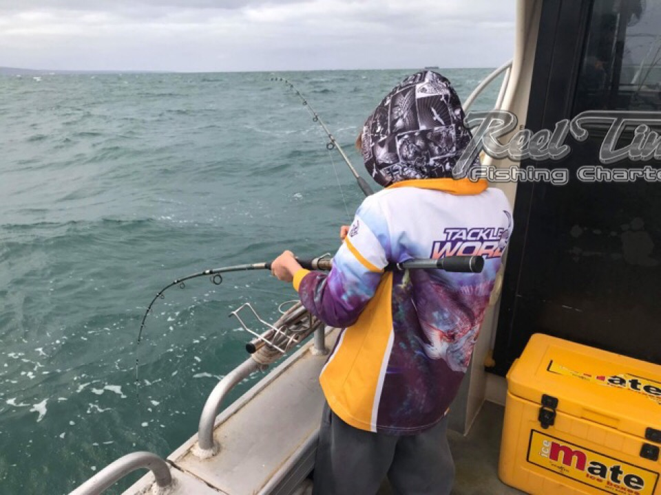Melbourne Snapper Fishing Charters