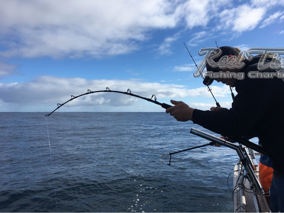 Booking a tuna Charter in Portland