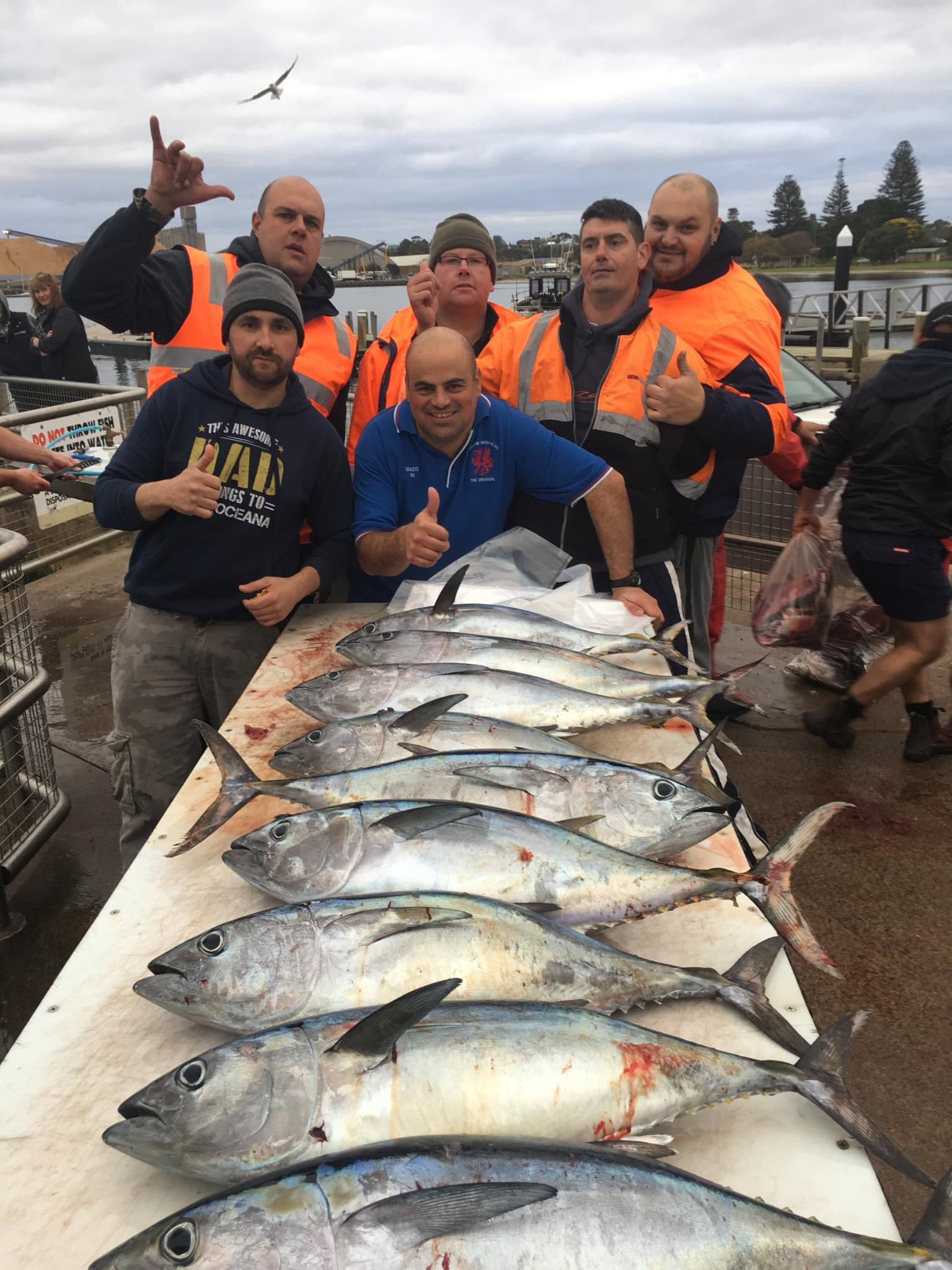 Tuna Fishing Charters Portland June 24th 2018