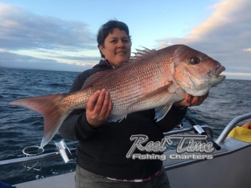 Snapper Fishing Charters Port Phillip Bay 2018 October