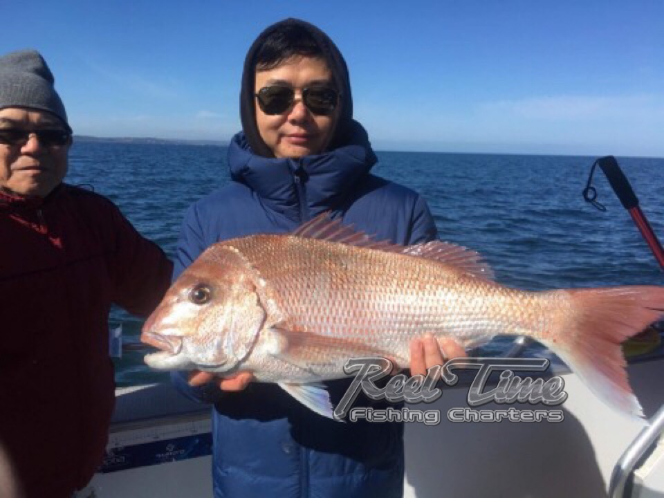 Snapper Fishing Charters Port Phillip Bay