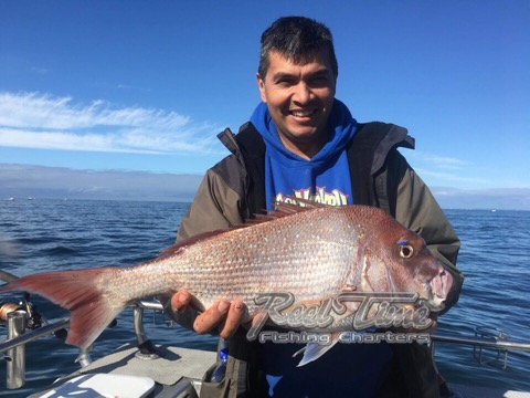 Snapper Fishing Charters Port Phillip Bay Nov 2019